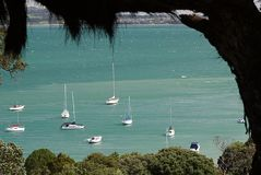 怀希基岛,新西兰港口 免版税库存照片