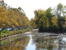 怒视横跨池塘的太阳 库存图片