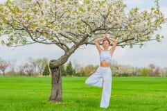 思考在瑜伽vrksasana树姿势的妇女在公园 免版税图库摄影