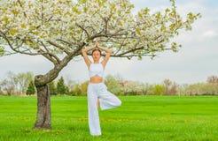 思考在瑜伽vrksasana树姿势的妇女在公园 免版税库存图片
