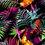 绘急性无缝的背景的热带植物剪影 库存照片