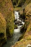 急流和峡谷垂直的看法  免版税库存照片