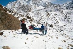 紧急状态疏散一个受伤的登山人,尼泊尔喜马拉雅山 图库摄影