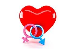 性别标志和爱 免版税库存图片