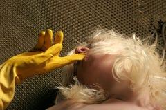 性感白肤金发的女孩 图库摄影