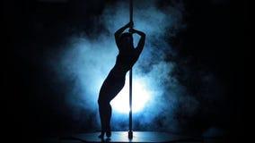 18of23性感的女性杆跳舞的剪影 股票视频
