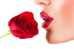 性感的妇女嗅到的花,肉欲的红色嘴唇 免版税库存照片