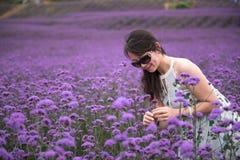 性感的妇女在淡紫色主题乐园 免版税库存照片