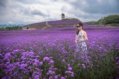 性感的妇女在淡紫色主题乐园 库存照片