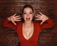 性感的妇女 库存照片