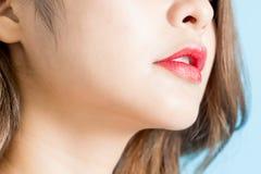 性感的秀丽嘴唇 图库摄影