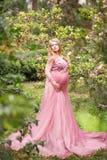 性感的美丽的长的礼服的妊妇在庭院近的开花的木兰 库存照片