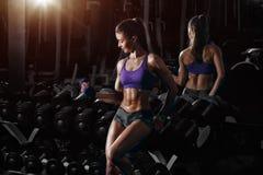 性感的运动员女孩训练有哑铃的二头肌胳膊在健身房 免版税库存照片