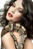 性感的年轻黑暗雇用了摆在露胸部的藏品的妇女蛇 库存图片