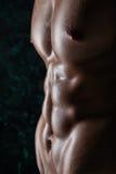 性感的年轻肌肉人的赤裸身体 免版税库存照片