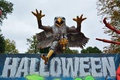 怪异老鹰 免版税库存图片