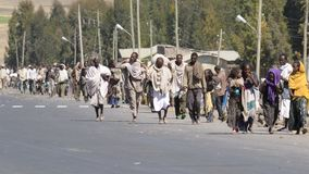 总是在活动中埃赛俄比亚的人员 库存照片