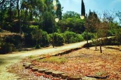 总统公园在尼科西亚,塞浦路斯在10月 图库摄影