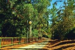 总统公园在尼科西亚,塞浦路斯在10月 库存图片
