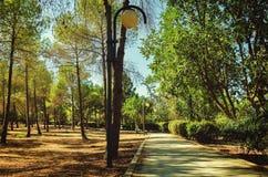 总统公园在尼科西亚,塞浦路斯在10月 免版税库存图片