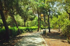 总统公园在尼科西亚,塞浦路斯在10月 库存照片