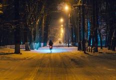 恋人在冬天在晚上停放 库存照片