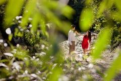 恋人夫妇在森林里 库存图片