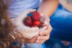 恋人拿着一个成熟草莓 库存图片
