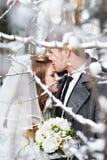 恋人新娘和新郎 免版税库存图片