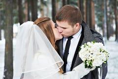 恋人新娘和新郎 免版税库存照片