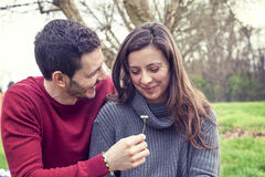 恋人男孩给一朵雏菊她的女朋友 免版税库存照片