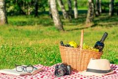 恋人的浪漫野餐-篮子用酒和果子 免版税库存照片