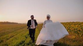 恋人跑在向日葵的一个美好的领域的男孩和女孩 他们微笑 女孩穿一件美丽的白色礼服 股票录像