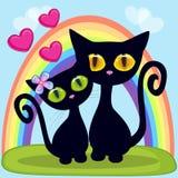 恋人黑小猫 库存图片