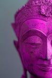 恍惚的荧光的菩萨 库存照片