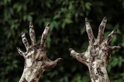 恐怖和万圣夜题材:可怕的蛇神手肮脏与黑钉子为绿色叶子,走的死的启示到达,最初 库存照片