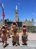 恐龙展览促进在渥太华 库存照片