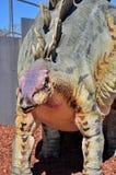 恐龙现实模型  库存照片