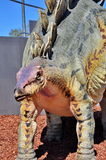 恐龙现实模型  免版税库存照片