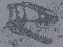 恐龙的头骨在平的岩石的 免版税库存图片