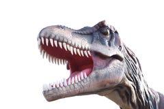 恐龙的头 库存照片
