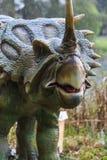 恐龙陈列在植物的公园 免版税图库摄影