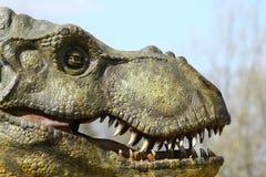 恐龙顶头rex暴龙 图库摄影