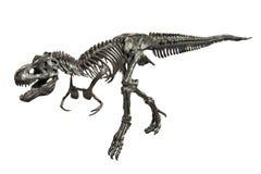 恐龙暴龙雷克斯最基本的金属模型 库存照片