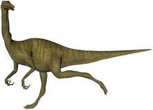恐龙Gallimimus 免版税库存图片