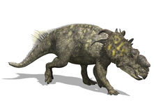 恐龙pachyrhinosaurus 皇族释放例证