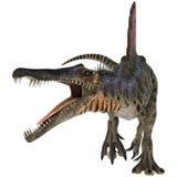 恐龙Spinosaurus 库存照片