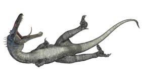 恐龙Suchomimus 库存照片