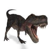 恐龙tarbosaurus 免版税库存照片