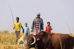恩戈马,纳米比亚- 2016年8月16日:在非洲大草原的坚硬农村生活 农村卡普里维小条的, t年轻和成人牧羊人 库存图片